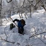 ... a pidižvíci se zahrabali dokonce v lese