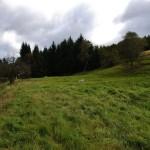 Tábořiště - bývalý mlýn v Mohelnici