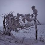 Zimní romantika 1