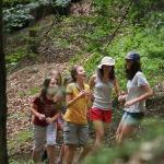 'Tajný' postup lesem